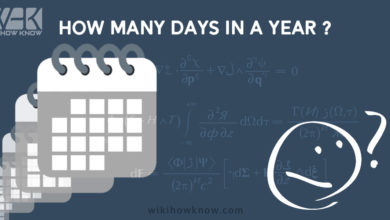 Photo of Do you know how many days in a year?