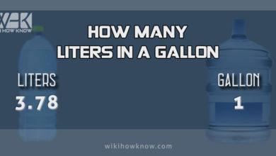 Photo of How Many Liters in a Gallon?