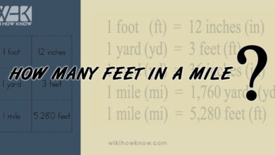 Photo of How Many Feet in a Mile?