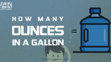 Photo of How many ounces in a gallon?