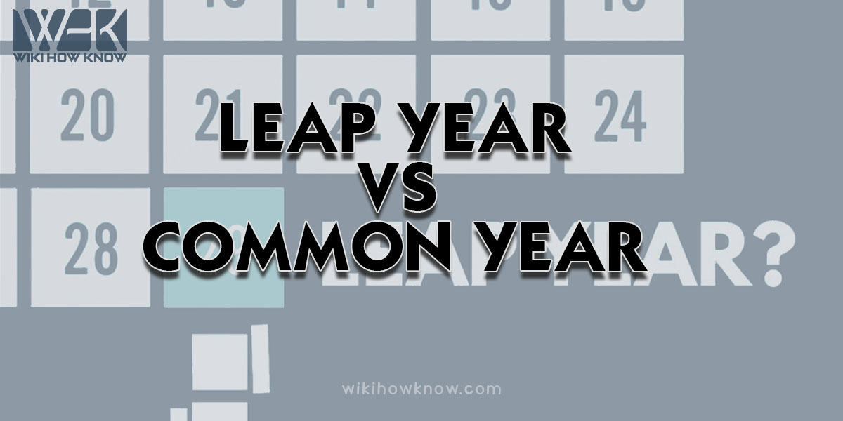 Leap Year VS Common Year