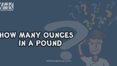 Photo of How Many Ounces in a Pound?