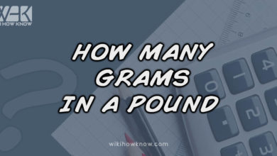 Photo of How Many Grams in a Pound?
